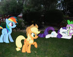 It Looks Like Rarity Loves Spike After All