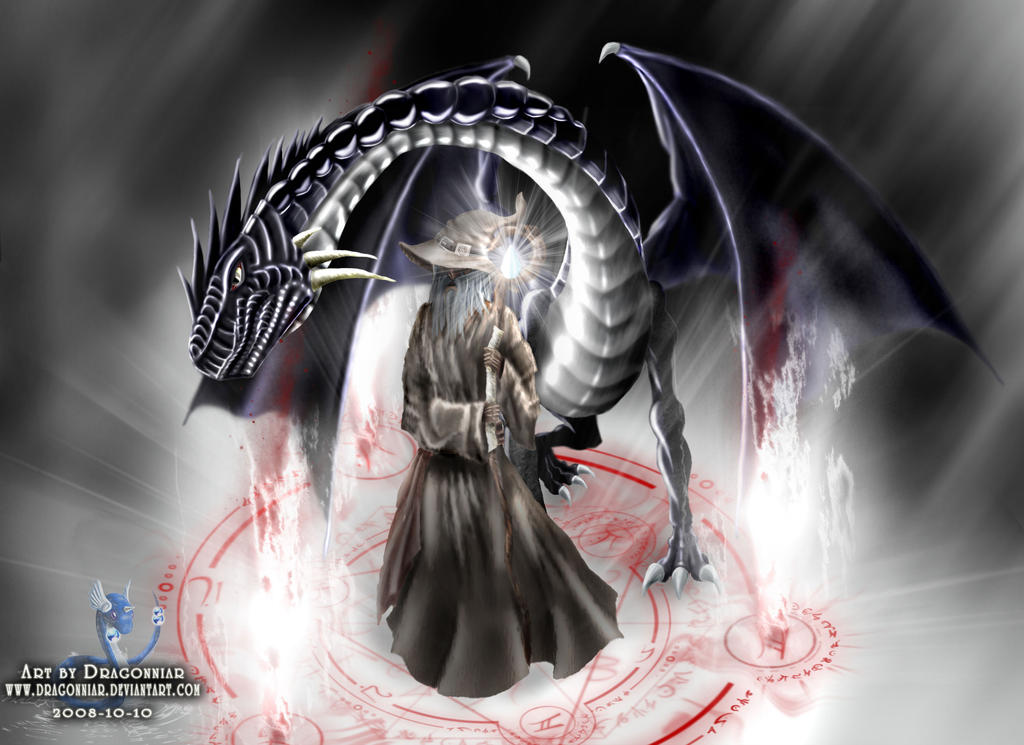wizard and his dragon by dragonniar on deviantart
