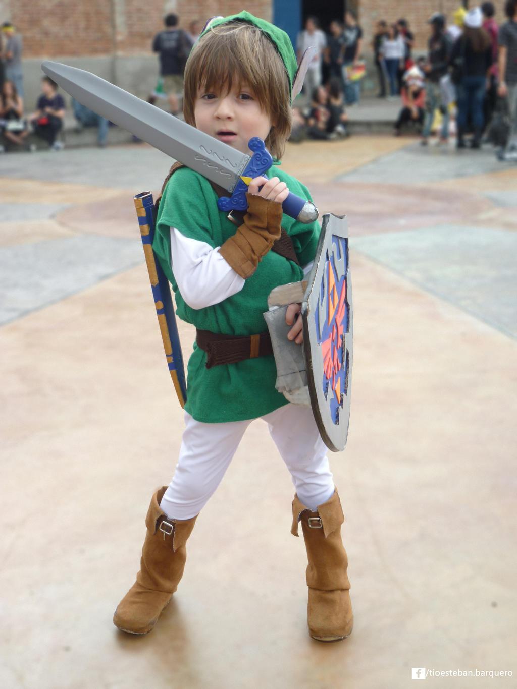 Link (The Legend of zelda) by nandolopal