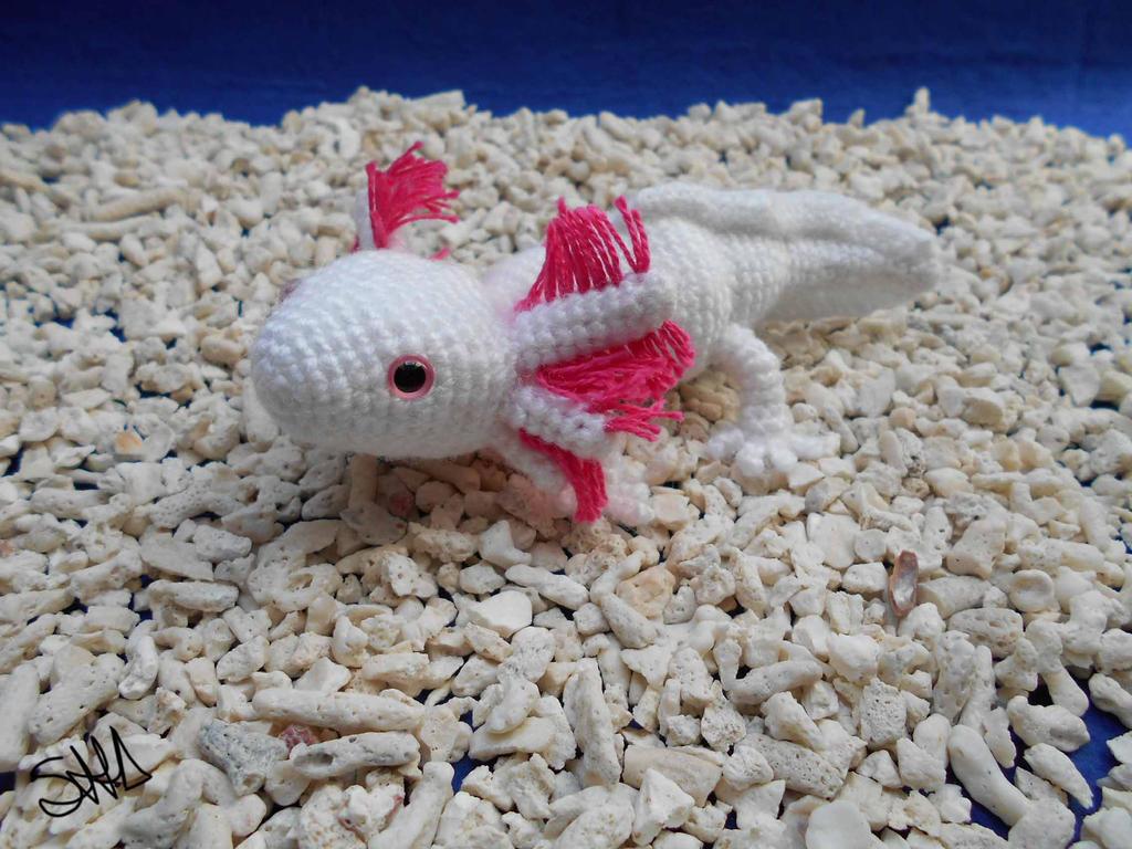 Axolotl by sushann