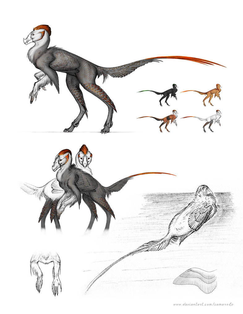 Sketchdump: Maava species