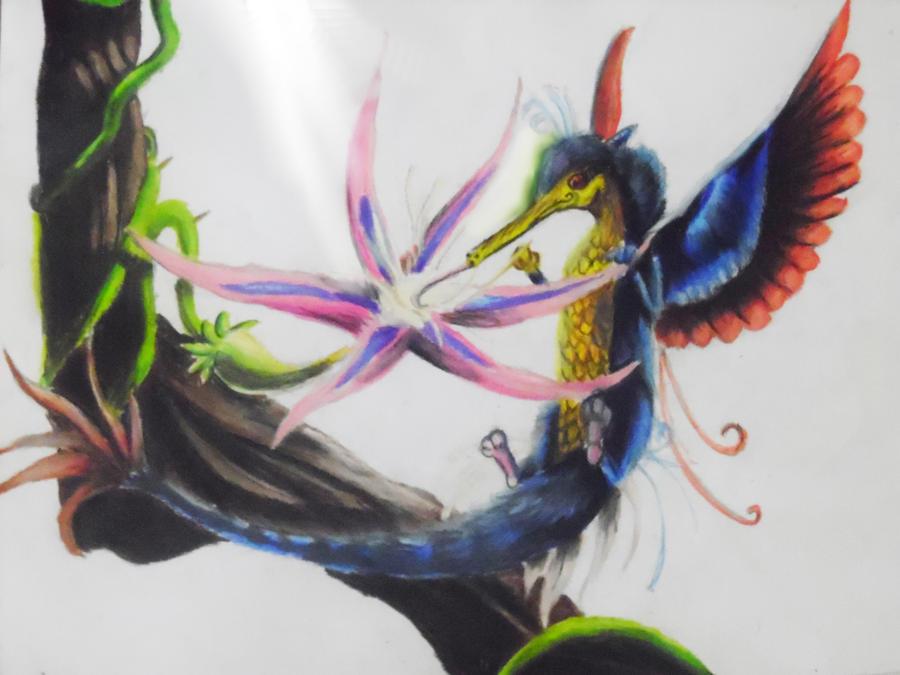Colibri by carig