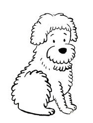 11. Dog
