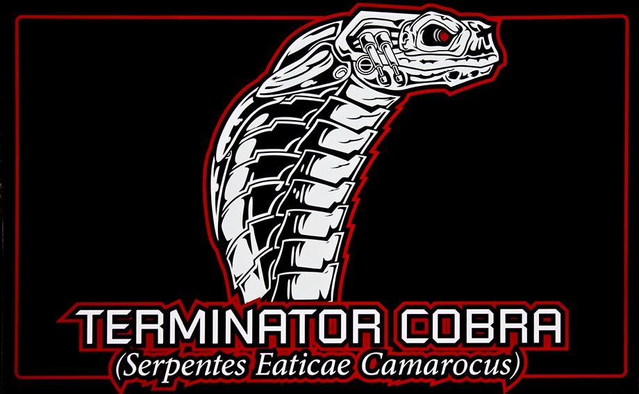Terminator Cobra Mods