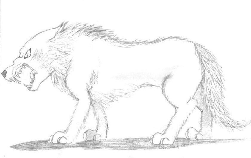Drawing of an Angry Wolf by T-TEmoEllieT-T on DeviantArt