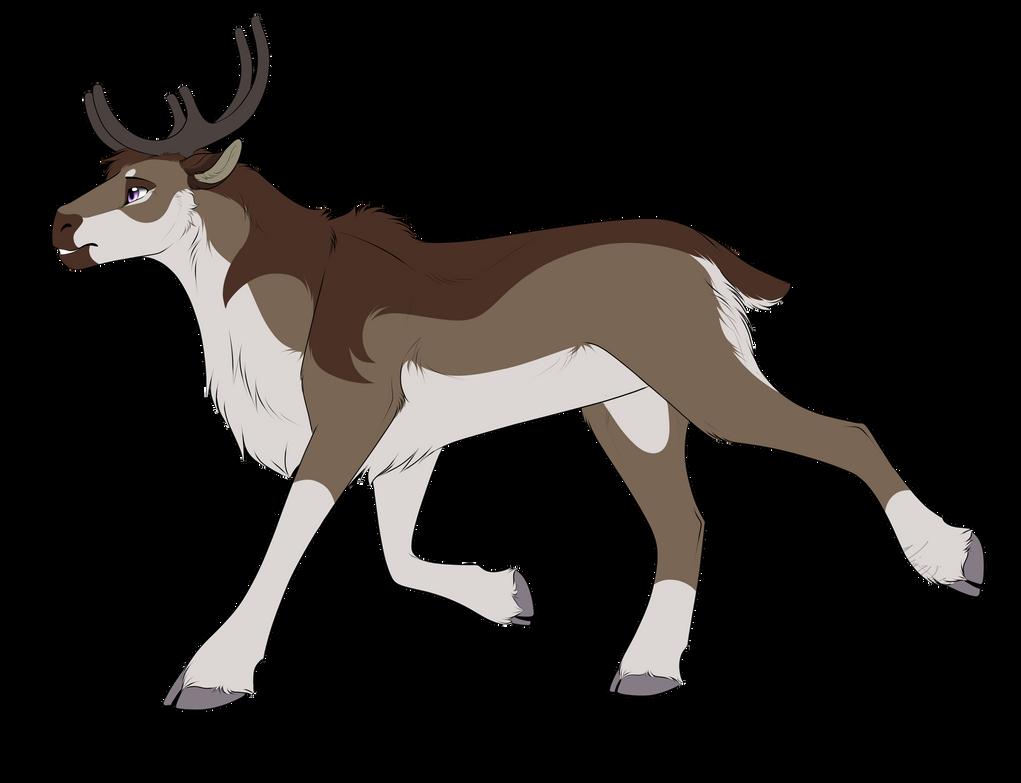 Taner the Caribou (com)