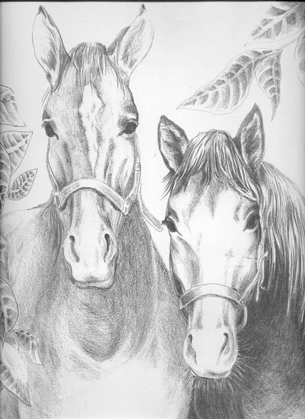 Horses by Xzolzibzz