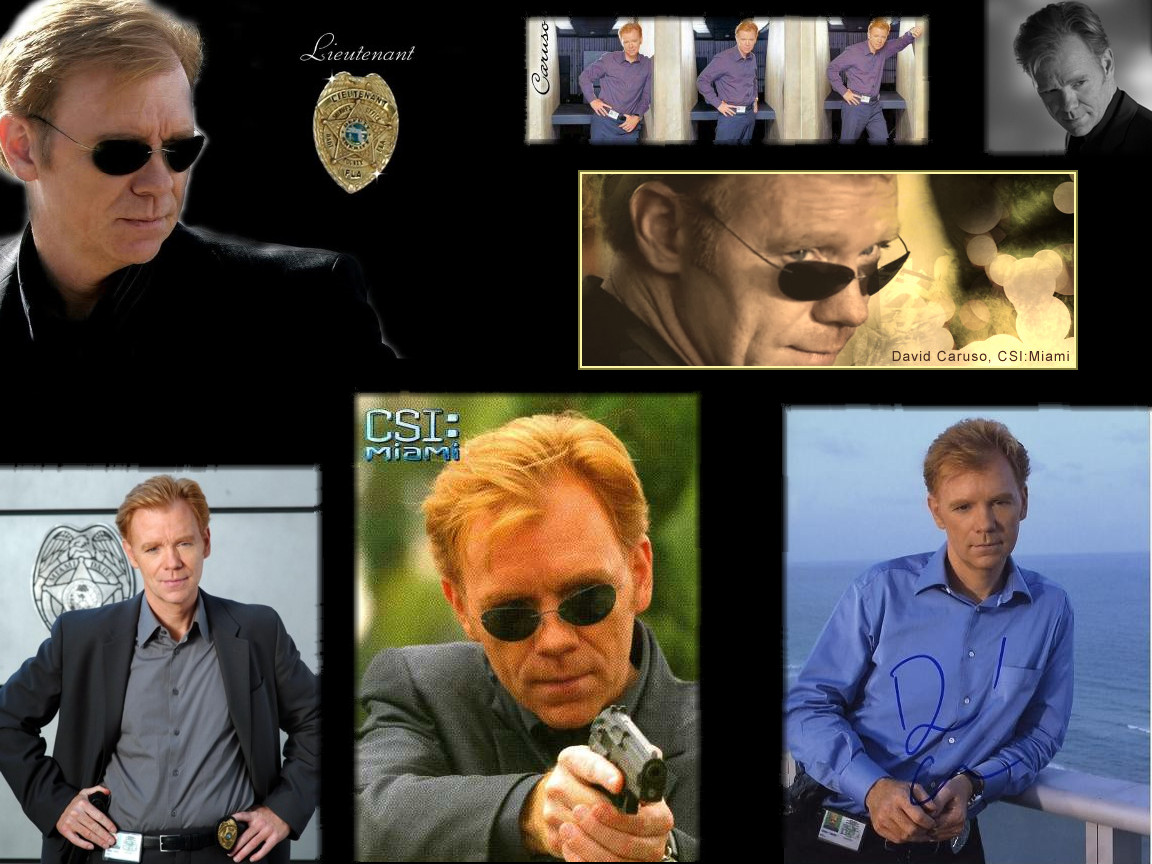 Horatio Caine Wallpaper By Outlaw393 On Deviantart