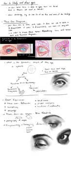 Sloppy eye study notes, thank you istebrak