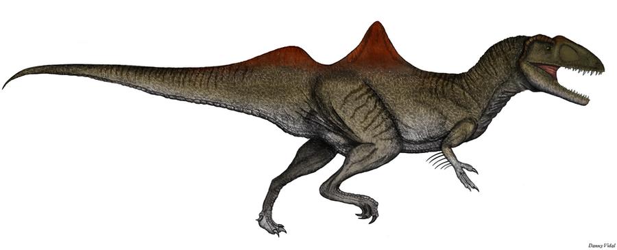 Concavenator corcovatus by rick-raptor