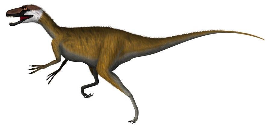 Staurikosaurus pricei by rick-raptor