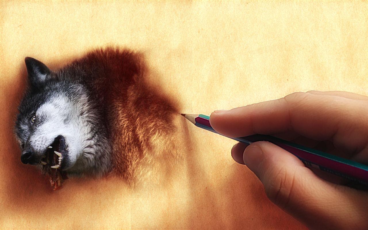 Draw Your Dream Tonight by WhiteSpiritWolf