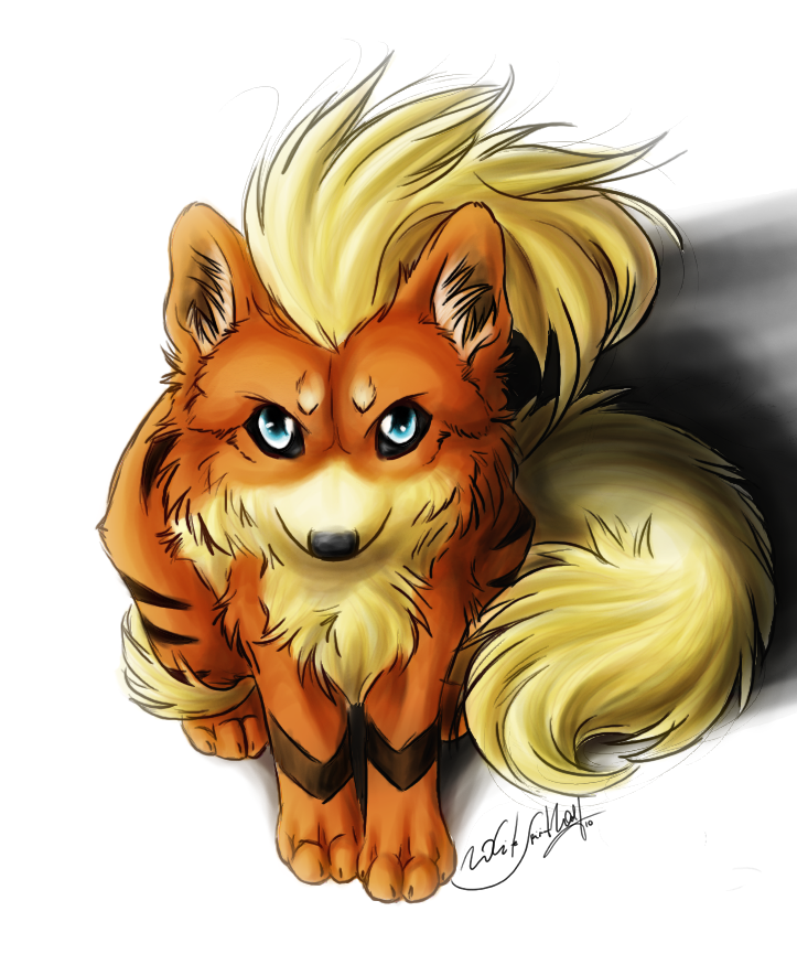 Arcanine and growlithe - Arcanine pics ...