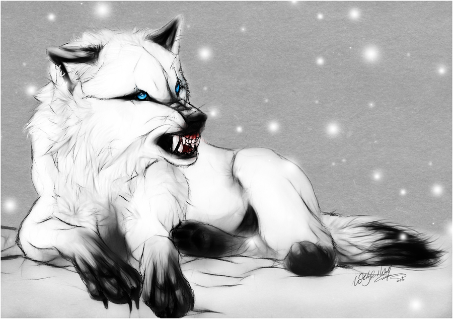 .:WhiteSpirit:. Redesign By WhiteSpiritWolf On DeviantArt