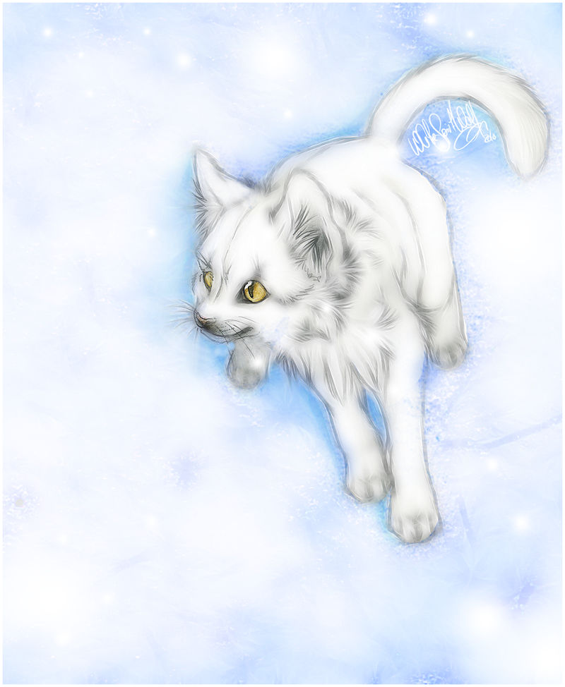 .:White Cat in Snow:. by WhiteSpiritWolf