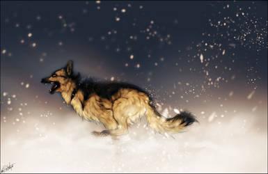PC :: Chasing Snowflakes :: by WhiteSpiritWolf