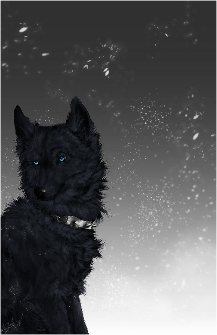 Wolf's Rain .:Blue:. by WhiteSpiritWolf