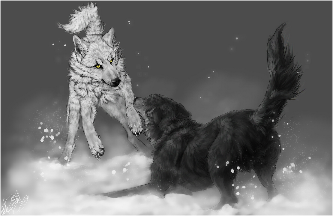 Wolf's Rain .:Kiba vs. Tsume:. by WhiteSpiritWolf