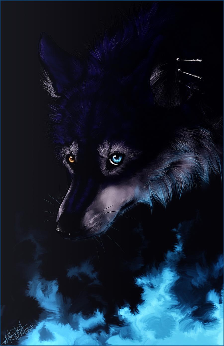 blue fire wolf wwwpixsharkcom images galleries with