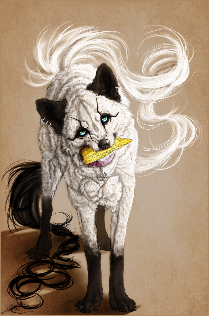.:Corn White Wolfy:. by WhiteSpiritWolf
