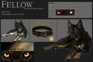 Ref-Sheet::Fellow::
