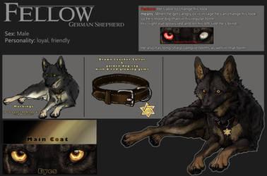 Ref-Sheet::Fellow:: by WhiteSpiritWolf