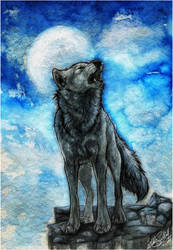 .:Night Howl:. by WhiteSpiritWolf