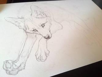jumping FOX. WIP by WhiteSpiritWolf