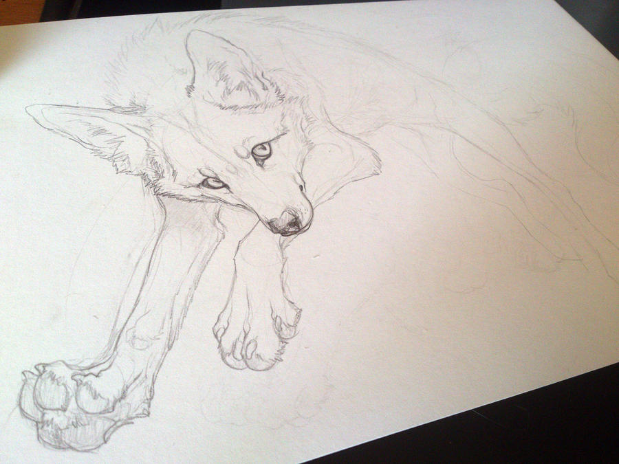 jumping FOX. WIP by WhiteSpiritWolf