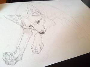 jumping FOX. WIP