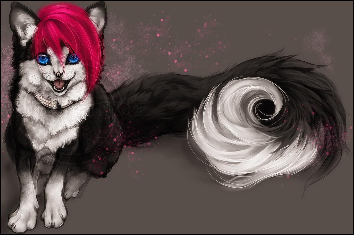 C .: Lucky Kitten :. by WhiteSpiritWolf