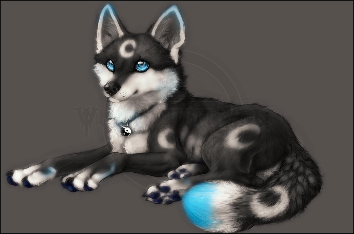 PC .: Luna:. by WhiteSpiritWolf
