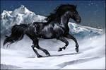 BlackHorse . SnowRun. by WhiteSpiritWolf