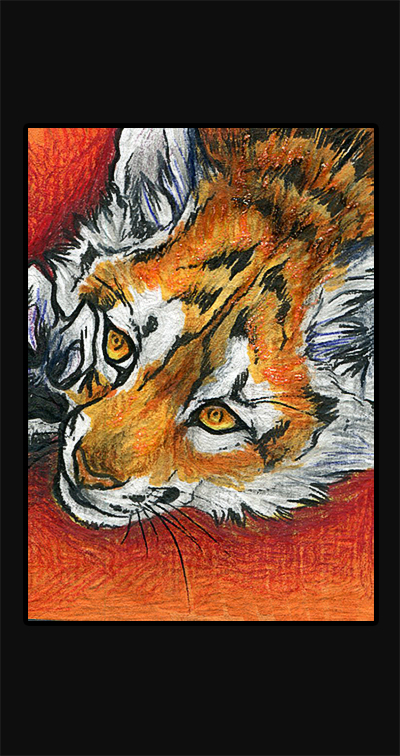 ATC .: Tiger :. by WhiteSpiritWolf