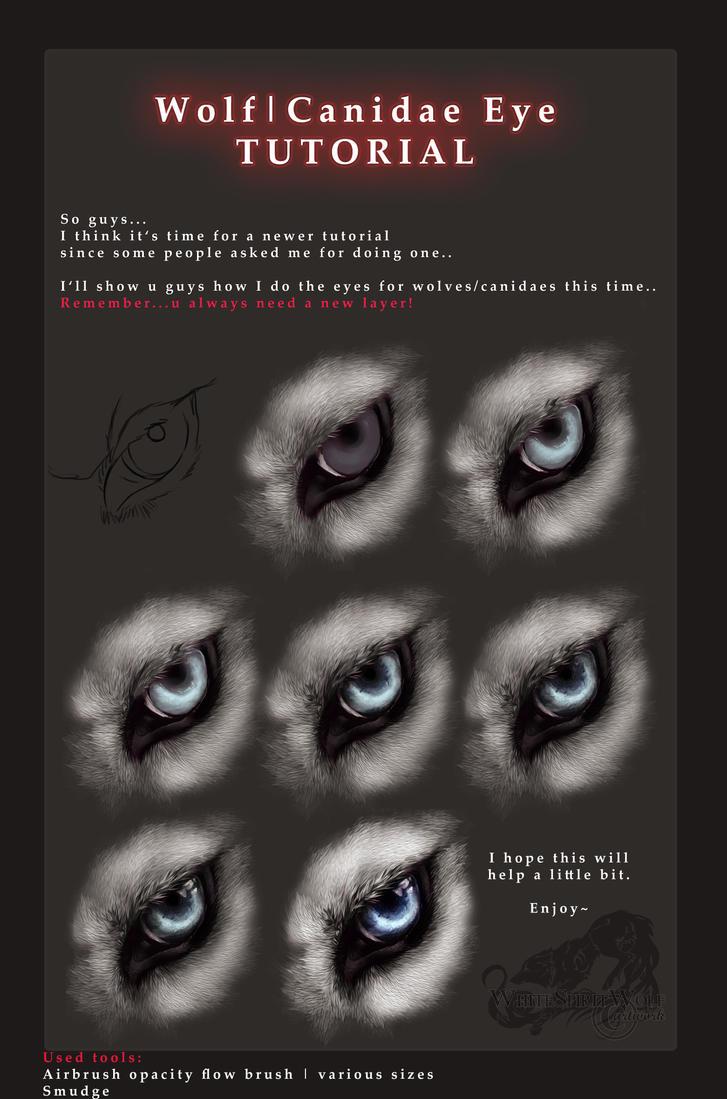 Wolf-Canidae Eye TUTORIAL by WhiteSpiritWolf