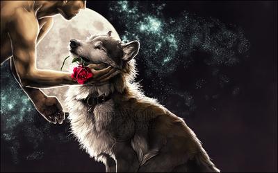 .:Night Romance:. by WhiteSpiritWolf