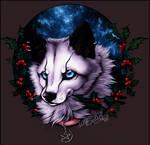 .: Winter Light - Christmas Time :.