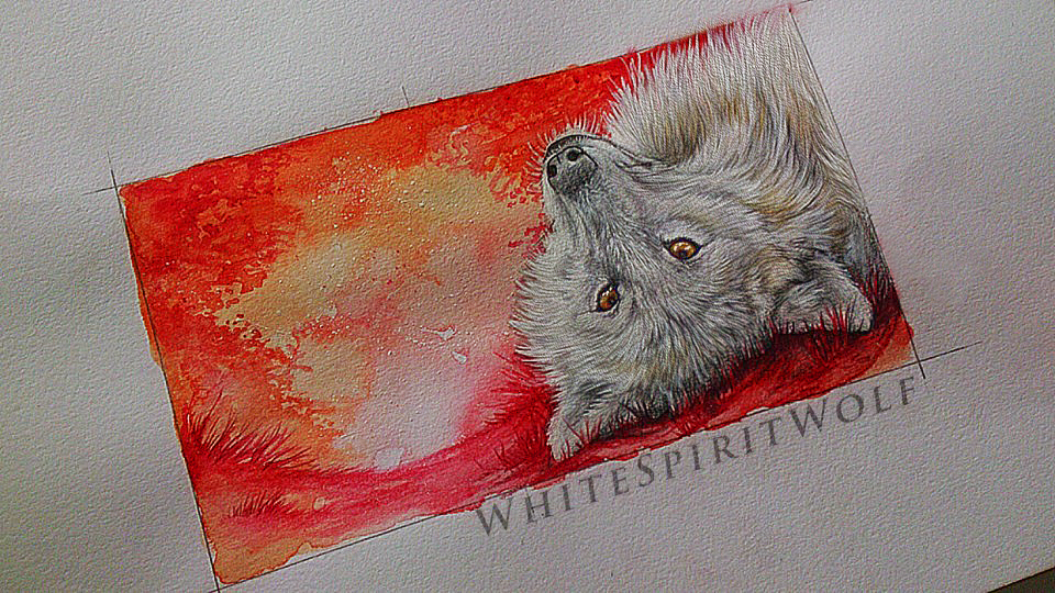 .: White Fluff :. by WhiteSpiritWolf