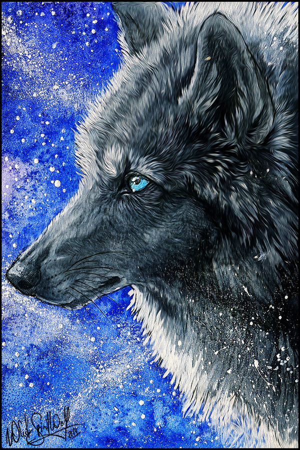 .: Black Galaxy Wolf :. by WhiteSpiritWolf