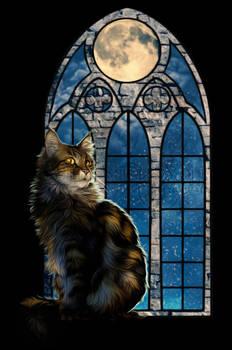 .: Moonlight Kitty :.
