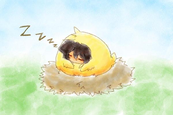 taihiwatari's Profile Picture