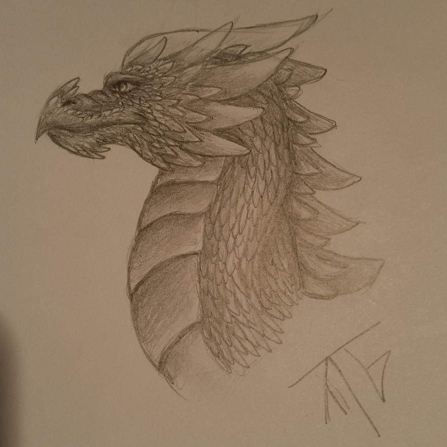 Dragon head by Taigatanfan