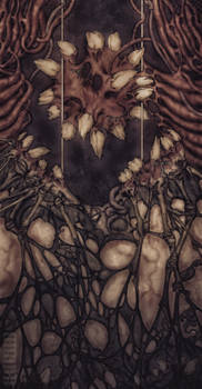 Depths of Perception II - Nadir