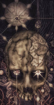Depths of Perception I - Zenith