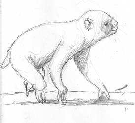 Marsupial primate sketch