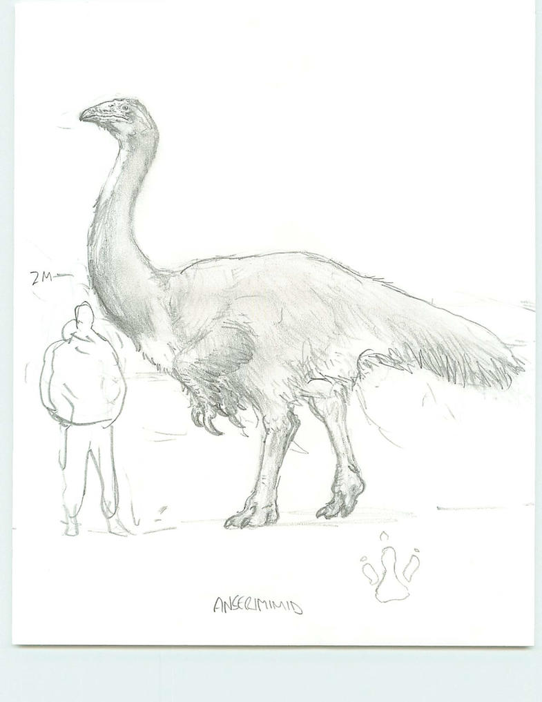 Anserimimus by povorot