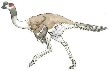 Dromaeopteryx by povorot