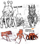 Amphoran Fauna sketches