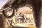 A Mammoth Summer