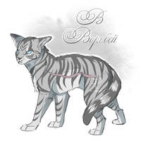 Jayfeather by Fox-Desert
